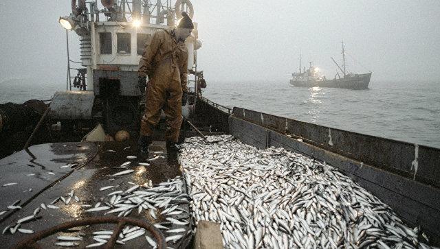 Улов рыбы. Архивное фото