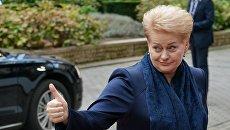 Президент Литвы Даля Грибаускайте перед открытием саммита ЕС в Брюсселе