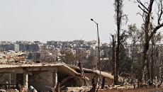 На территории военных училищ в Алеппо, которая была освобождена сирийской армией от боевиков. Архивное фото.