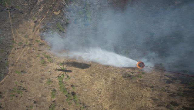 Тушение лесных пожаров. Архивное фото