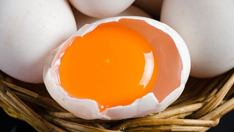Госпожа ненавидит яйца фото 614-440