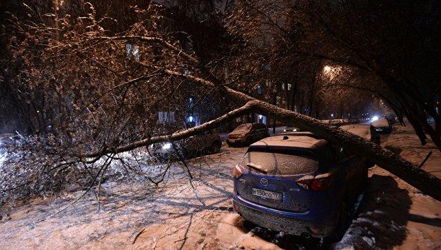 Столичные энергетики перешли наособый режим работы всвязи снепогодой