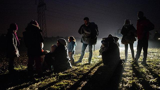Мигранты, прибывшие с территории Хорватии, в автобусе, следующим в лагерь беженцев. Архивное фото