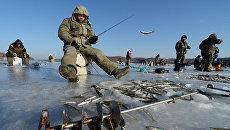 Рыбаки-любители в бухте Новик острова Русский во Владивостоке