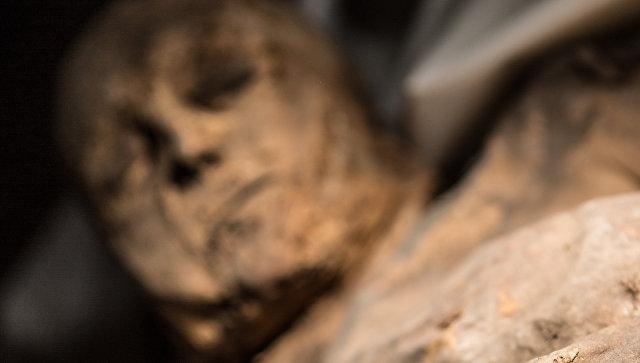 Вдревней мумии ребенка отыскали вирус-убийцу