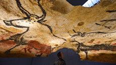 Посетители на открытии копии пещеры Ласко в Монтиньяке, Франция