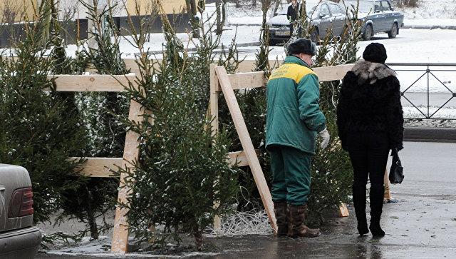 В российской столице с20декабря заработают елочные базары