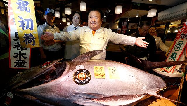 ВЯпонии огромный тунец ушел смолотка за634 тысячи долларов