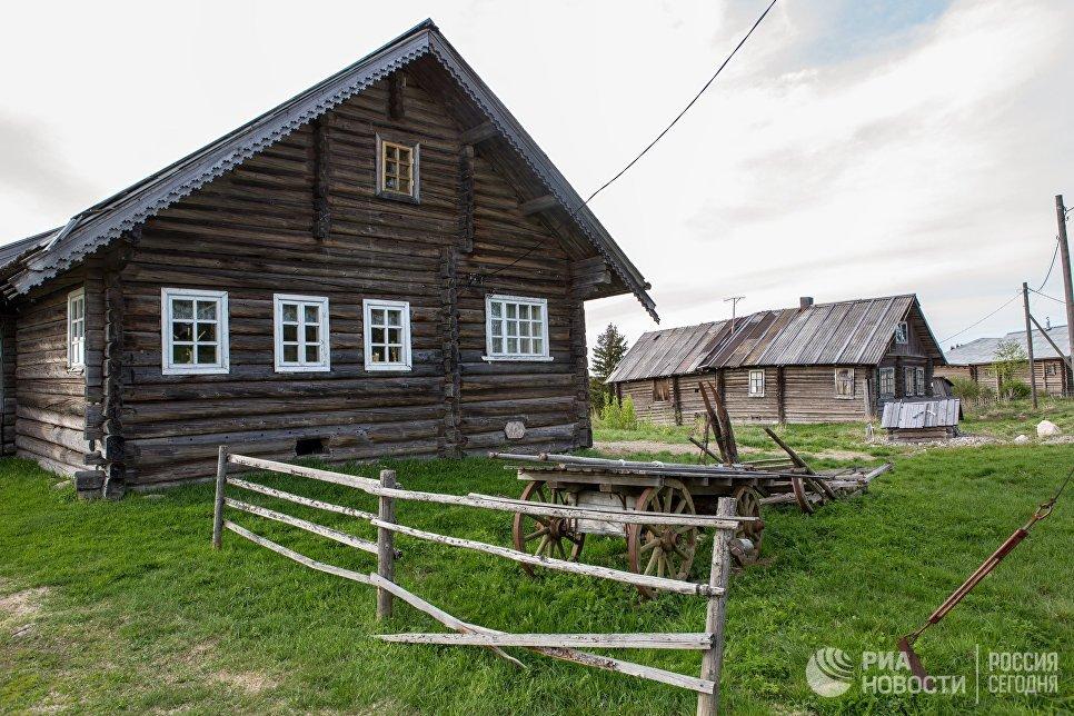 Жилые деревянные дома в деревне Кинерма в Карелии