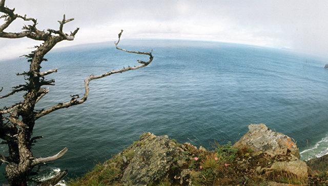 Экологи Восточного военного округа подготовили карту очистки острова Большой Шантар