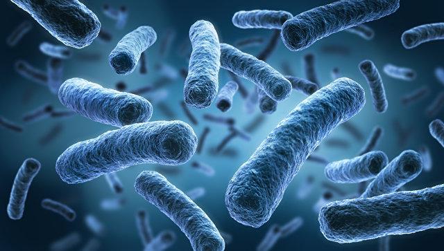 Учёные изобрели «супероружие» для борьбы с«супер-бактериями»