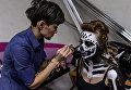 Участница гримирует модель во время финала конкурса Лучший гримёр года, приуроченного ко Дню Российского Гримёра