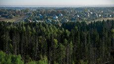 Зелёный щит защитит российские города