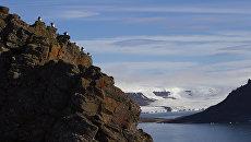 Национальный парк Русская Арктика. Архивное фото