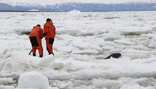 ВМагдагачинском районе под лед провалился бульдозер