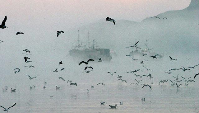 Росрыболовство: из-за новых норм в США рыболовные державы понесут потери