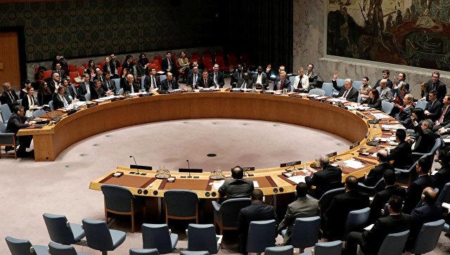Заседание Совета безопасности ООН по Сирии