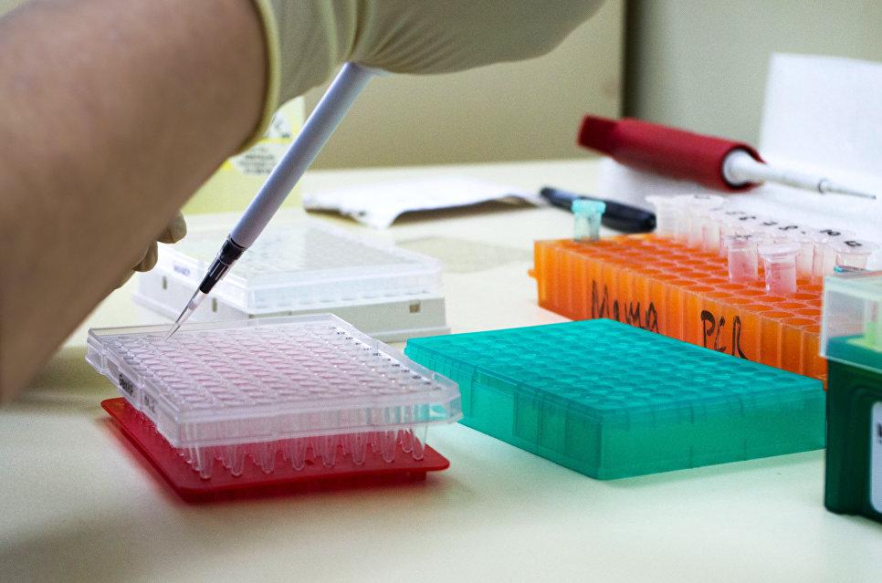 Уникальная ДНК-лаборатория МГУ займется исследованием мух-убийц