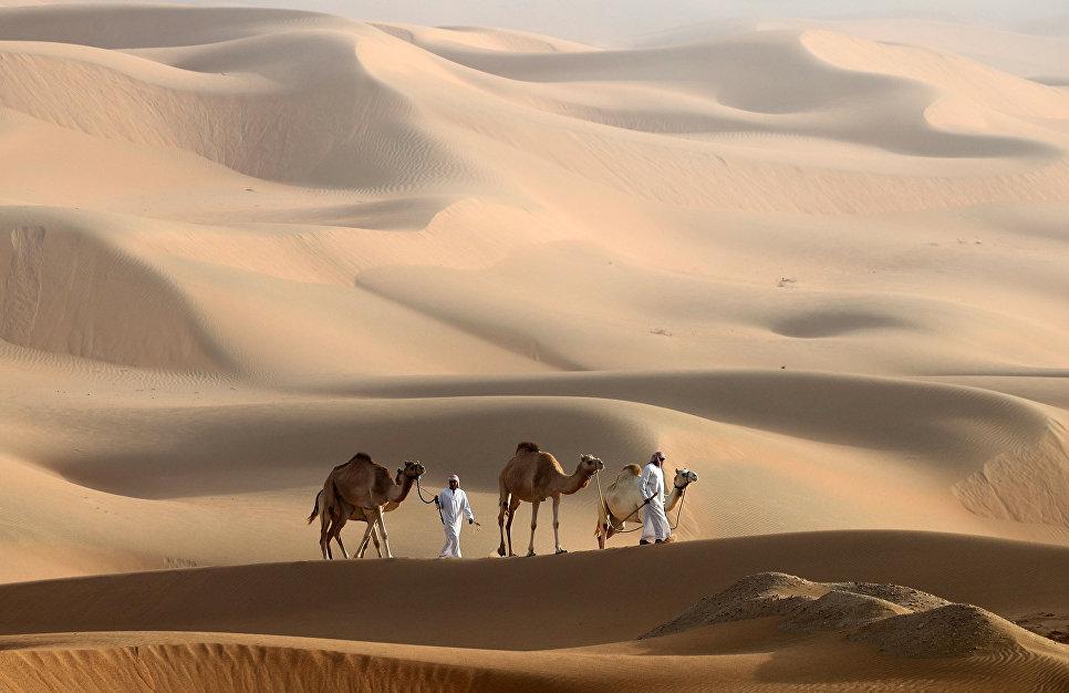 Мужчины ведут своих верблюдов по дюнам в пустыне ОАЭ