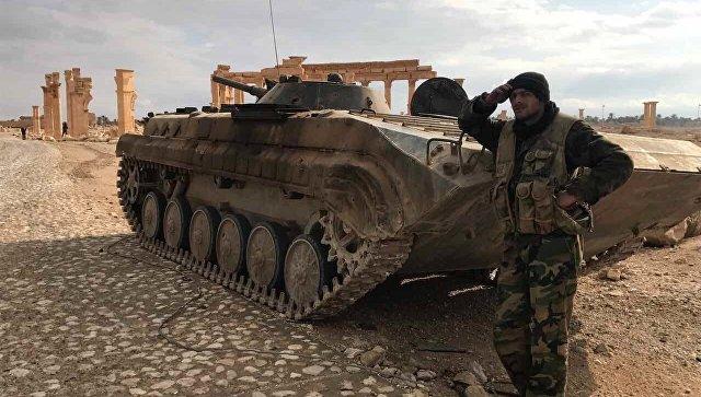 Военнослужащий Сирийской Арабской Республики возле историко-архитектурного комплекса Древней Пальмиры в сирийской провинции Хомс. Архивное фото