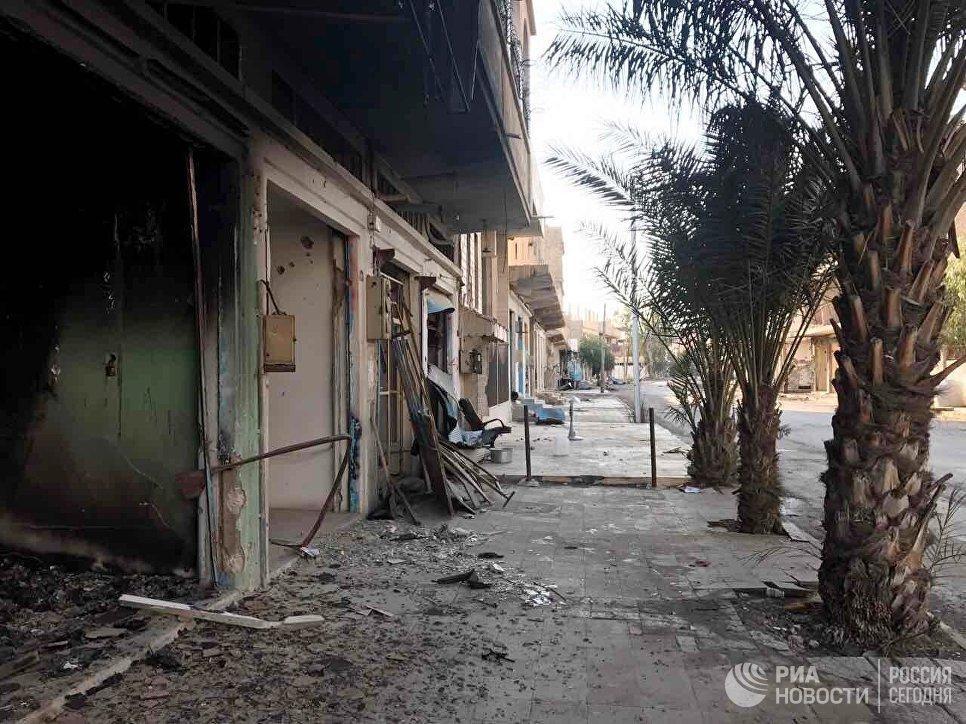 Разрушенные в результате боевых действий дома в жилой части города Пальмира в сирийской провинции Хомс