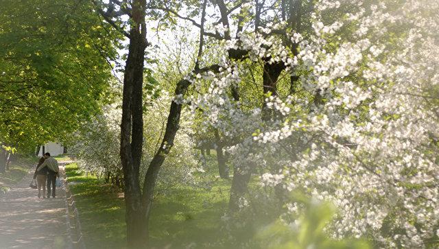 ВАлтайский край пришла астрономическая весна— Весеннее равноденствие