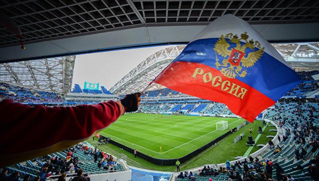 Болельщик с флагом России на трибуне стадиона Фишт в Сочи. Архивное фото