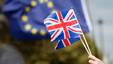 Противники выхода Великобритании из Европейского Союза (ЕС) на улице Лондона. Архивное фото