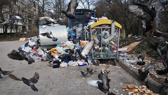 Во Львове мусор после ливня плавал по улицам