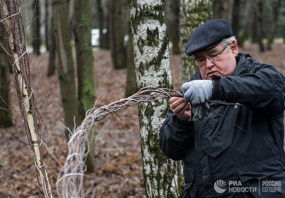 Председатель комитета Государственной Думы РФ по финансовому рынку Николай Гончар занимается посадкой деревьев на общегородском субботнике в парке Победы на Поклонной горе