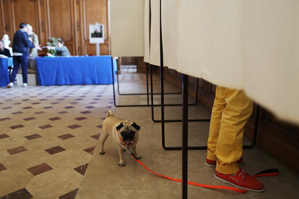 Избирательный участок в Кане, Франция