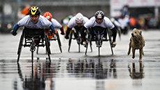 Более 900 человек участвовали в фестивале спорта инвалидов Воробьевы горы