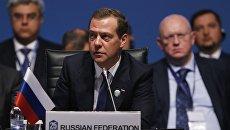 Председатель правительства РФ Дмитрий Медведев выступает на саммите ОЧЭС в Стамбуле. 22 мая 2017