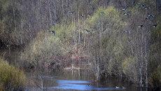 Костромская область. Архивное фото