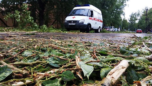 """МЧС открыло """"горячую линию"""" из-за урагана в московском регионе"""
