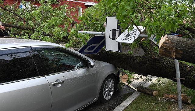 Последствия урагана. Архивное фото