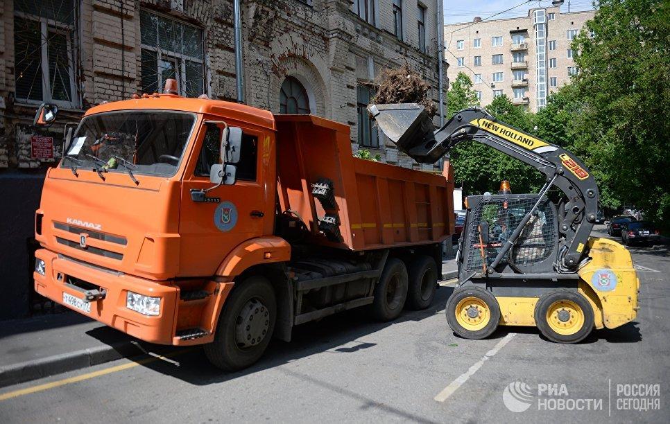 Работники коммунальных служб убирают поваленные деревья на одной из улиц Москвы
