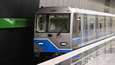 Поезд в московском метро. Архивное фото