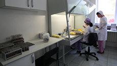 Лаборанты в лаборатории. Архивное фото