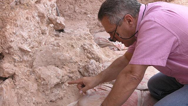 Первые люди появились на100 тыс. лет раньше, чем считалось— Палеонтологи
