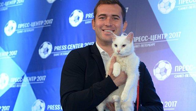 Эрмитажный кот Ахилл уверен в том, что Россия сегодня на высоте