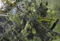 """Сферический токамак """"Глобус-М"""", сооруженный в ФТИ им. А.Ф. Иоффе"""