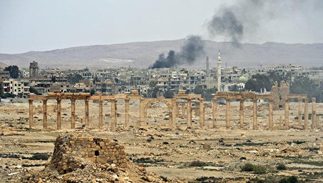 Вмузее старинного города посетовали наотсутствие обещанной помощи отЮНЕСКО— Пальмира