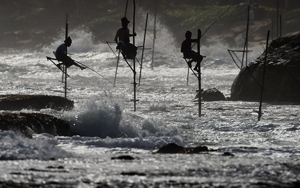 Рыбалка в городе Галле, Шри-Ланка