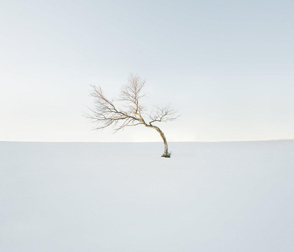 Работа фотографа Дмитрия Богачука Баллон д'Альзас, занявшая первое место в категории Пейзаж. Профессионалы на ежегодном фотоконкурсе компании Nikon Я | В СЕРДЦЕ ИЗОБРАЖЕНИЯ
