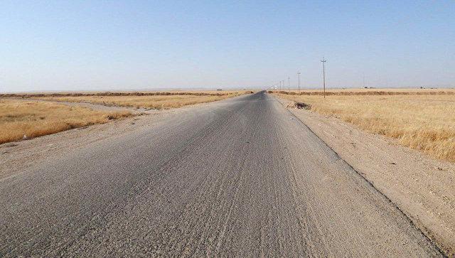 Минобороны сообщило оботсутствии нарушений перемирия вСирии засутки