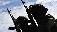 Военнослужащие спецназа Росгвардии во время учений. Архивное фото