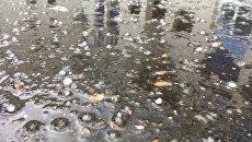 Дождь с градом. Архивное фото