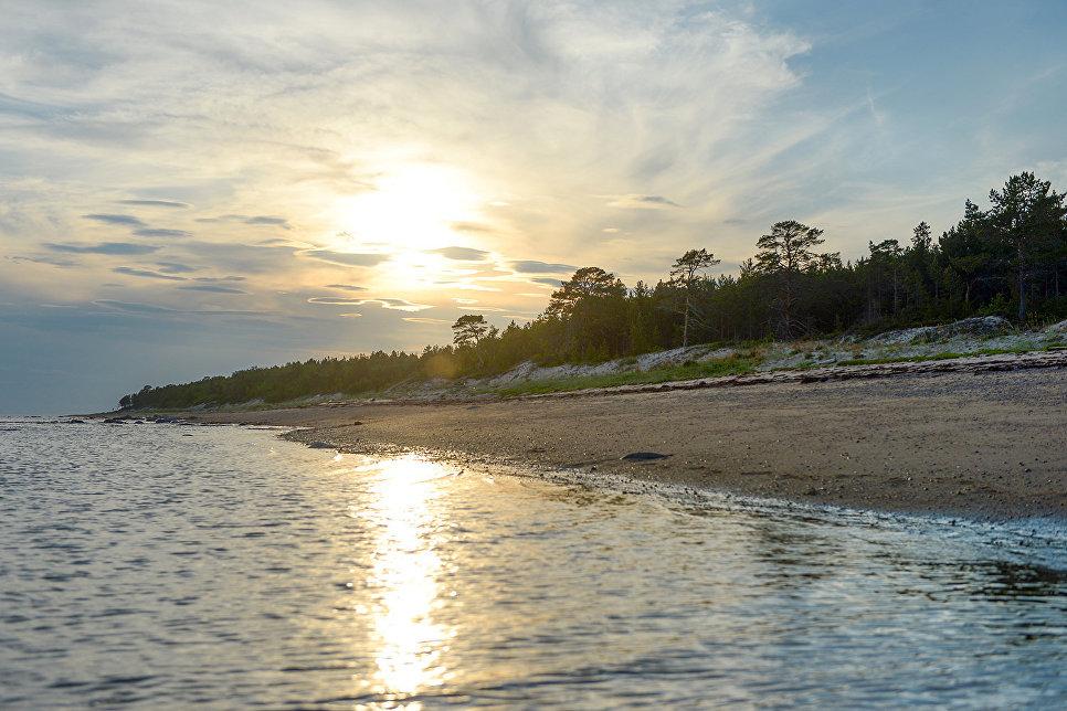 Традиционно Белое море делится на несколько берегов: Терский, Кандалакшский, Карельский, Поморский, Онежский, Летний, Зимний, Мезенский и Канинский и множество других