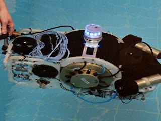 Демонстрация подводного робота в бассейне ДВФУ